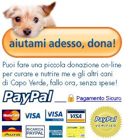 dona adesso con carta di credito, sicuro e veloce con PayPal.com
