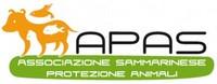 http://www.apasrsm.org/