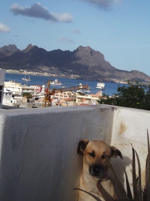 VIsta dalla terrazza con Max, il padrone di casa